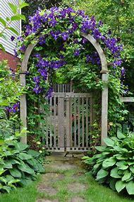 Clematis Garden with Gate