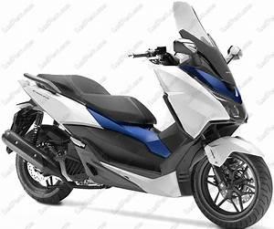 Honda Forza 125 Promotion : pack clignotants arri re led pour honda forza 125 ~ Melissatoandfro.com Idées de Décoration