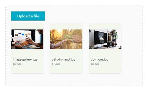 Multiple File Upload Using Fine Uploader