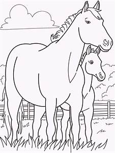 Horse And Babies Coloring
