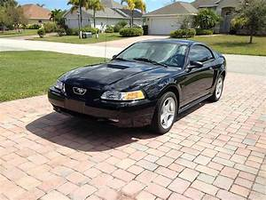4th gen black 2000 Ford Mustang GT 5spd manual For Sale - MustangCarPlace
