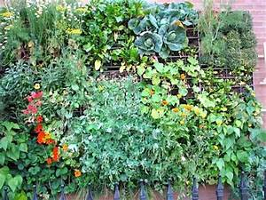 58 best Creative Planter Box ideas images on Pinterest