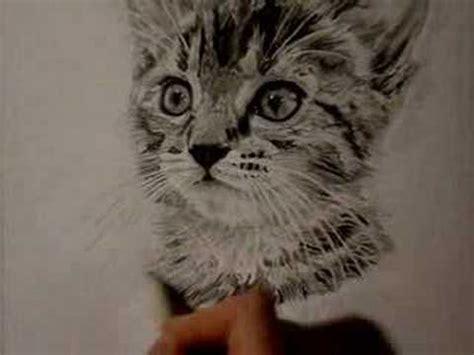 kitten drawing youtube