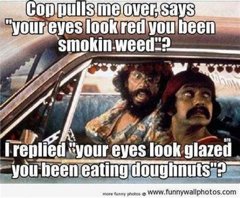 Funny Weed Memes - broke tattooed and screwed if pot can t fix it nobody can