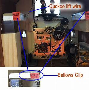 Diy Cuckoo Clock Repair Guide