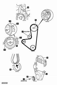 Replace Timing Belt  Replace Timing Belt On Citroen C3 1 1
