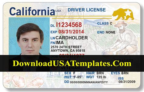 california drivers license template  updated psd