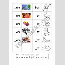 Phonics  3 Letter Words (cvc)  Writing Am  At  Esl Worksheet By Matthew@elsp