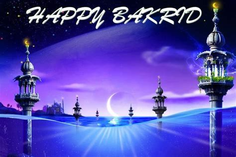 happy bakrid  ki photowishespics  hd whatsapp dp