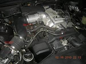 Lexus Ls400 Water Pump Diagram