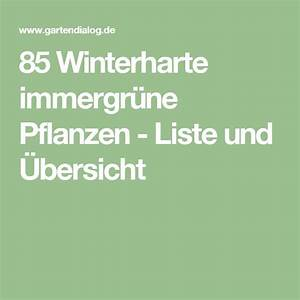 Immergrüne Sträucher Winterhart : 25 best ideas about winterharte pflanzen on pinterest ~ Articles-book.com Haus und Dekorationen