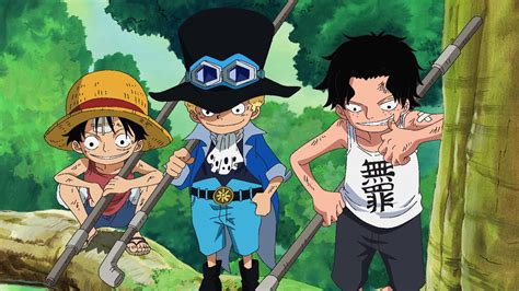 Watch One Piece Season 8 Episode 496 Sub & Dub | Anime ...