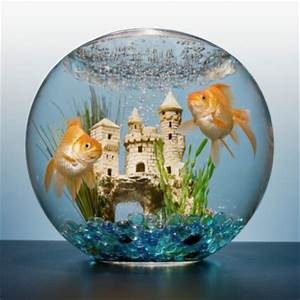 Two Goldfish In Bowl With Castle Stock Photo   Getty Images