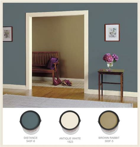 Best 25+ Wall Color Combination Ideas On Pinterest  Wall