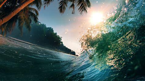 Wallpaper Wave, 5k, 4k Wallpaper, 8k, Ocean, Palms, Sun