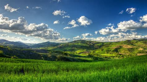 Nature, Landscape, Trees, Clouds, Hill, Field, Grass