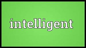 Intelligent Meaning - YouTube