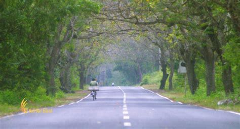 west bali national park tourist destinations