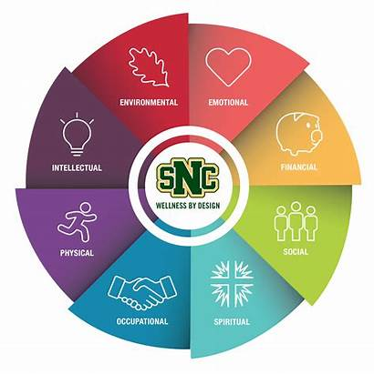 Wellness Wheel Dimensions Snc Eight Norbert Health