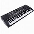 61 Key Electronic Keyboard Electric Organ Digital Music ...