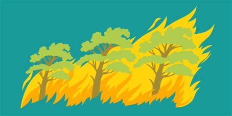 persen kebakaran hutan disebabkan oleh manusia