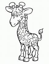 Coloring Giraffe Pages Printable sketch template