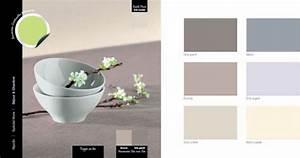 couleur decoration salle a manger nuance de gris clair With quelle couleur avec le gris 3 1001 idees pour savoir quelle couleur pour un couloir