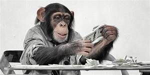What Can Monkeys Teach Us About Saving For Retirement