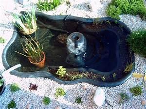 Bassin De Jardin Pour Poisson : bassin de jardin pour poisson pas cher bassin de jardin ~ Premium-room.com Idées de Décoration