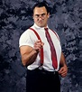 Mike Rotunda came into the WWF with the very similar I.R.S ...