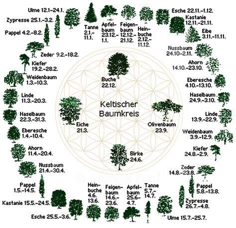 Skorpion Sternzeichen Monat by Der Keltische Baumkalender Ist Vor Ca 2000 Jahren