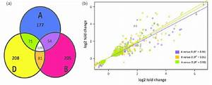 Homoeolog Induction Bias During Biotic Stress   A  Venn Diagram Showing