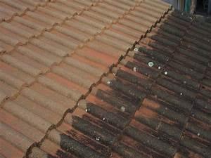 Tarif Nettoyage Toiture Hydrofuge : combien coute un nettoyage de toiture combien coute une toiture affordable rhausser sa toiture ~ Melissatoandfro.com Idées de Décoration