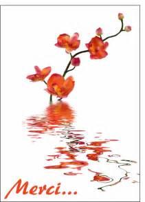 mot mariage carte merci et orchidees carte remerciement condolances par la poste