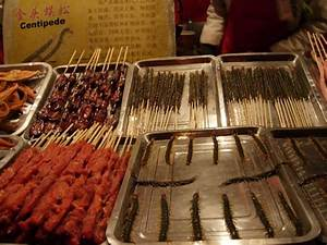 Fried Centipede | www.pixshark.com - Images Galleries With ...