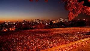 Most beautiful autumn HD wallpaper
