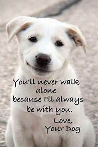 25+ best Quotes About Dogs on Pinterest | Puppy quotes ...