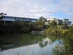 Belrose, New South Wales - Wikipedia