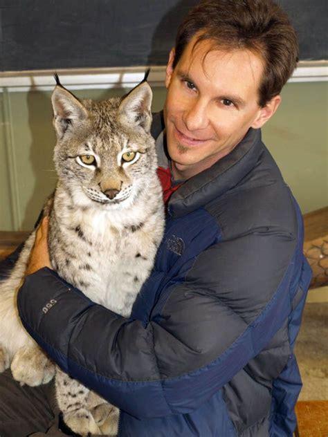 lynx cat jungle pets eurasian cats pet siberian kittens north katrina animals hurricane species america unusual ontario exotic severe frances