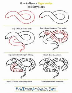 How To Draw Snakes Art Snake Drawing Drawings Snake Art