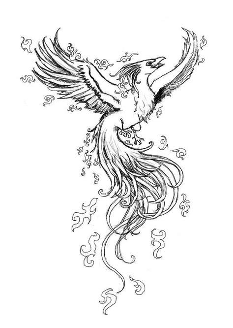 Pin by Amanda Presley on Tattoo-piercing ideas   Drawings, Phoenix drawing, Phoenix bird