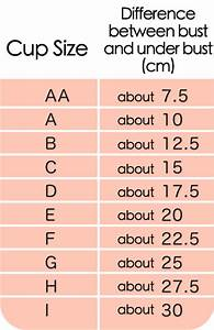 Breast Cup Sizes Chart