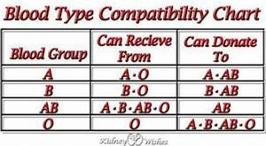 Human Blood Types Chart Pin On Near And Dear To My Heart Kwm