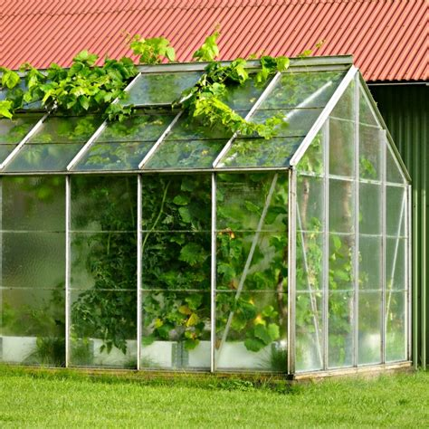 With an assortment of recycled materials, you can create an affordable diy greenhouse and enjoy fresh food all year long! Diy Greenhouse Large : Beginner Woodworking Tips To Help ...