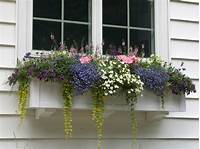 """flower boxes for windows 60"""" Window Boxes"""