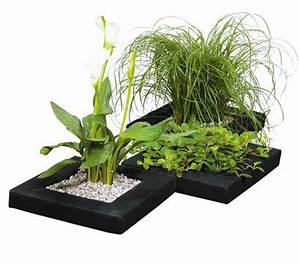 Wasserpflanzen Teich Kaufen : dehner treibring f r wasserpflanzen dehner garten center ~ Michelbontemps.com Haus und Dekorationen