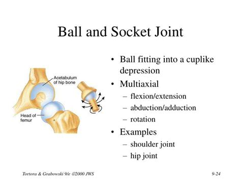 9 Classification Joints