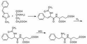 Bergmann Azlactone Peptide Synthesis
