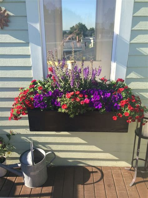 window box  red  purple petunias portulaca