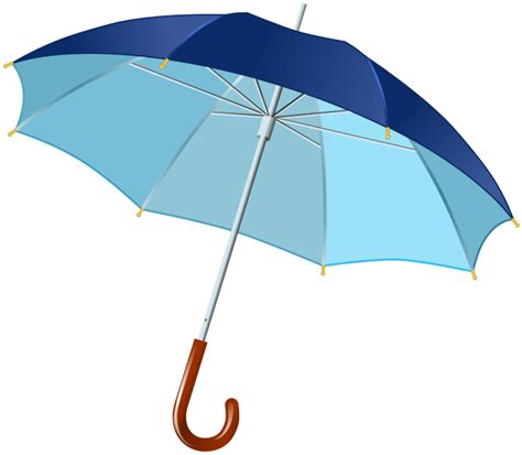 Essay on autobiography of an old umbrella